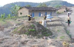 Jardin potager de Bwira